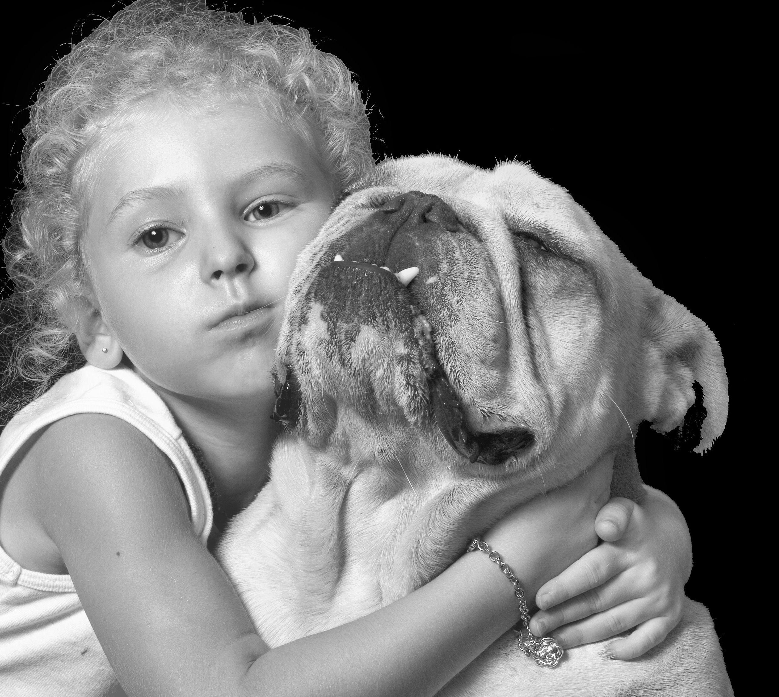 Sleeping English Bulldog Puppy Bulldogknuf