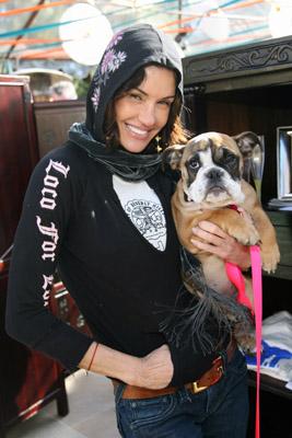 Janice+Dickinson+Bulldog+Model (2)