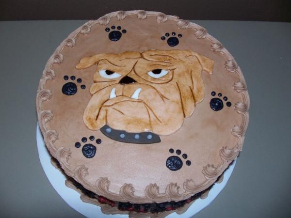 Bulldog Cake   BaggyBulldogs