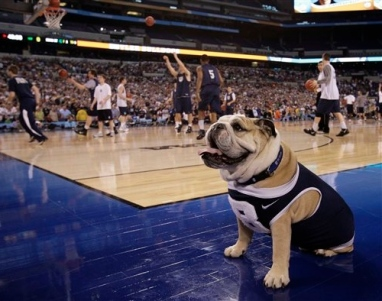 bulldog butler University