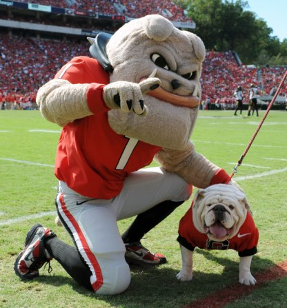 Uga the Bulldog University of Georgia 2