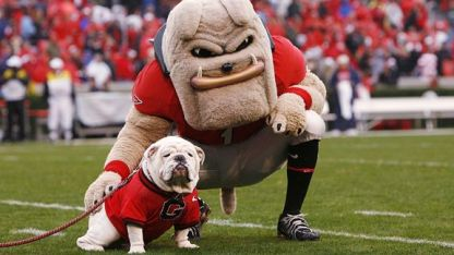 Uga the Bulldog University of Georgia