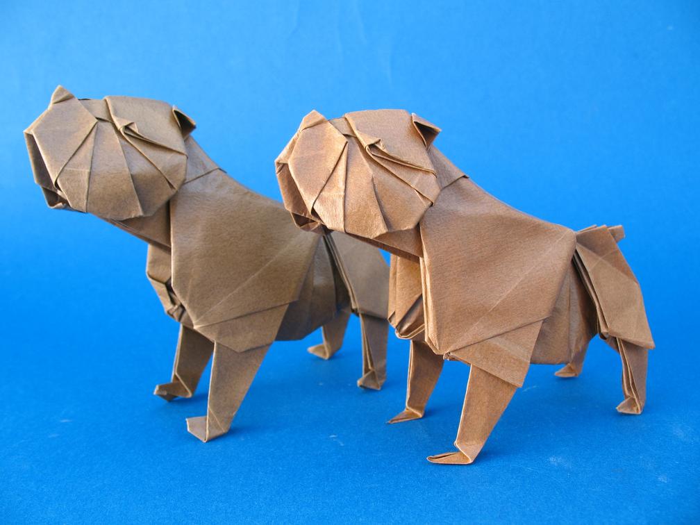 Bulldog Origami BaggyBulldogs